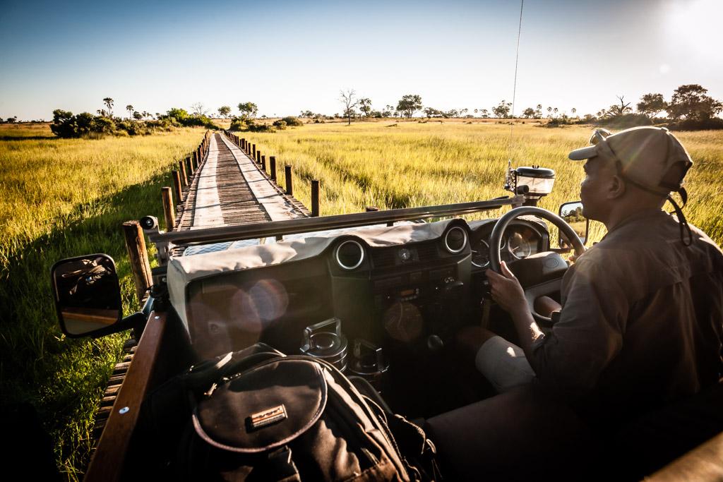 Botswana, Okavango Delta. Game Drive. Safari