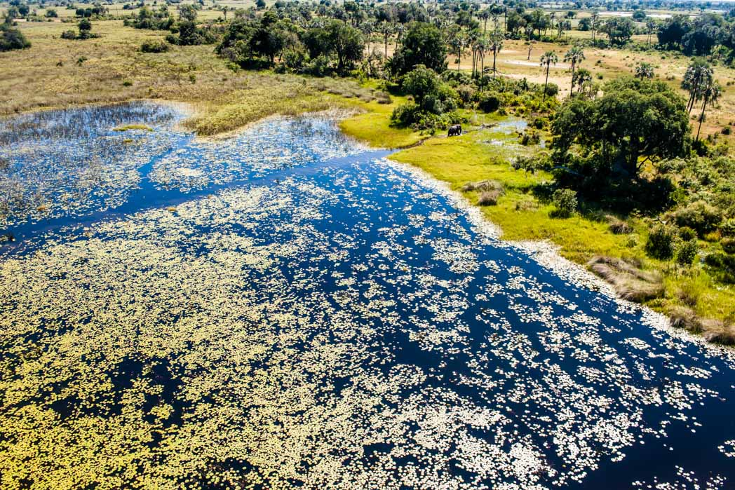 Botswana, Okavango Delta. Hubschrauberflug